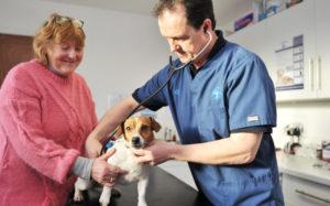 Pet Healthcare Plan